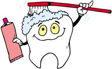 Cómo cepillarse los dientes paso a paso