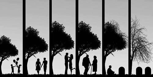 Vida-de-pareja