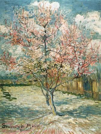 Almendro en flor, por Van Gogh